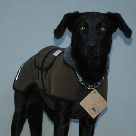 obleček pro psa